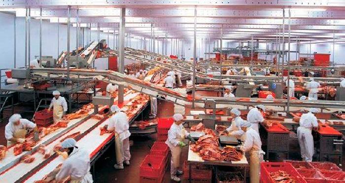 Мини-завод по переработке мяса
