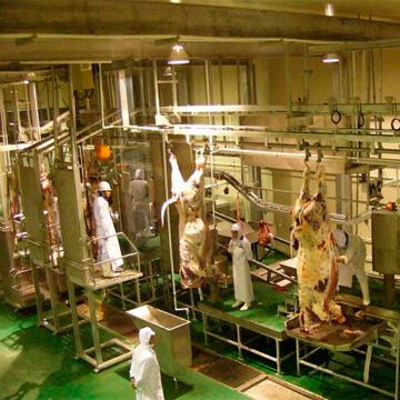 Производственные линии для убоя скота